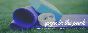 Healthy Hinesville Yoga in that Park